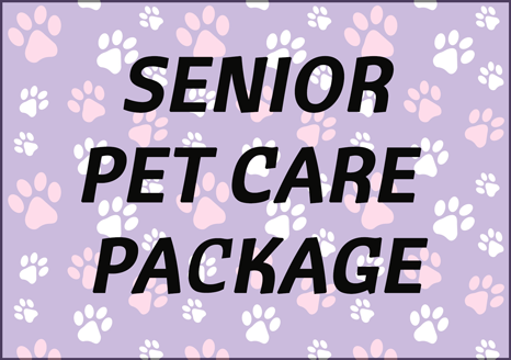 senior-monthly-