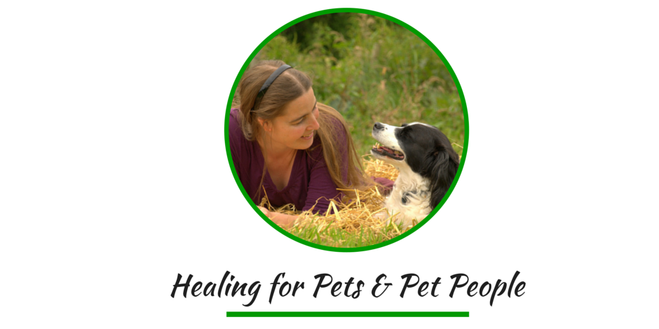 Healing for pets and people button