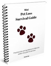 pet-loss-guide