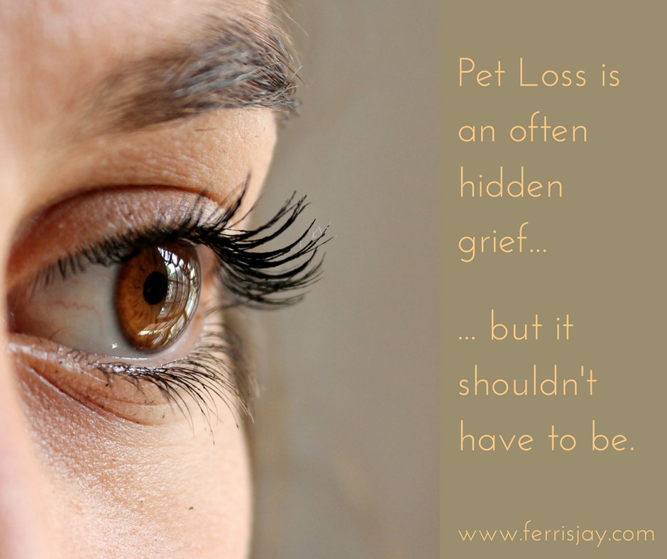 hidden grief of pet loss